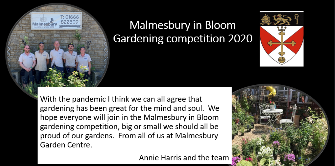 Malmesbury in Bloom - time to show off your Blooms!