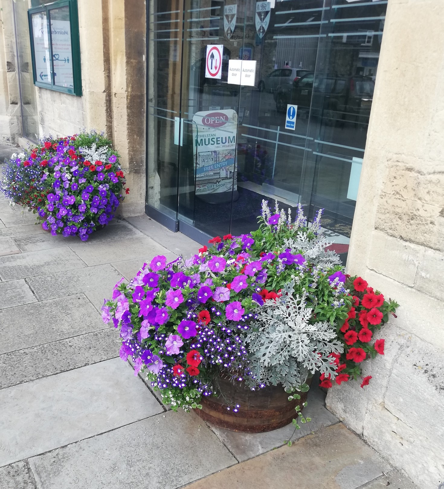 Malmesbury in Bloom 2020 Time to blossom!